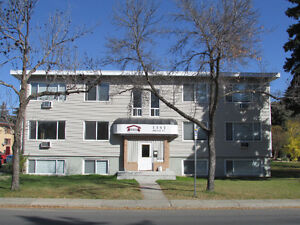 South and Downtown Regina Bach's, 1's and 2's For Rent