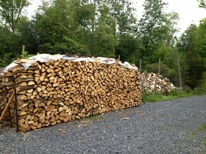 DRY SEASONED FIREWOOD,  CHEAP PICK UP PRICE-ODESSA Kingston Kingston Area image 2