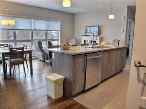 Superbe condo 3 chambres 1350pi2 - Professionnels et Retraités Gatineau Ottawa / Gatineau Area image 3
