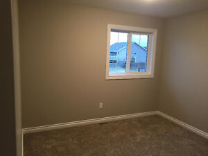 Female Painter with 8 years experience looking for cash jobs Edmonton Edmonton Area image 3