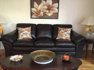 Sofa de cuir brun