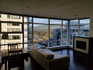 Stunning 2 Bdrm apartment with views!