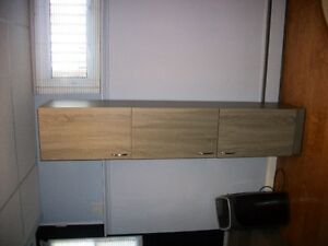 ALMOST NEW PANTRY CABINET