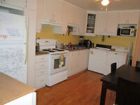 Spacious 4 1/2 in Ville-Émard for May 1st