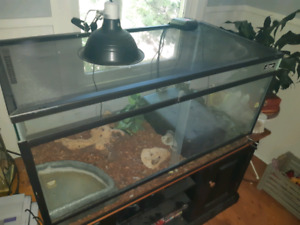 Red Tail Boa | Kijiji in Ontario  - Buy, Sell & Save with