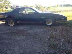 1982 Pontiac Trans Am Winter project or Parts vehicle