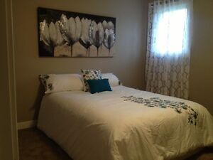 Beautiful newly renovated Condos for Rent in Watrous, SK. Regina Regina Area image 3