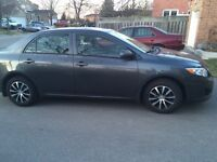 Gorgeous well maintained 2009 corolla