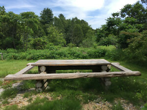 outdoor log picnic table
