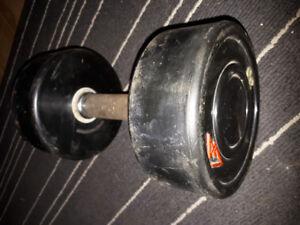 30 pound weight
