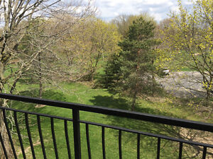 Bright, Clean, and Updated 1 Bedroom Apartments! Stratford Kitchener Area image 4