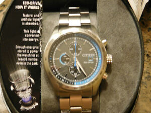 """New Citizen Eco-Drive"" London Ontario image 3"