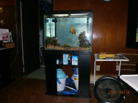 two fish tanks