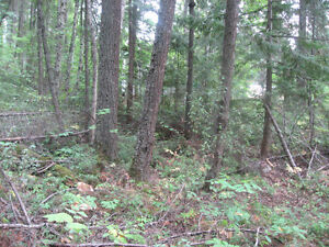 Lot for Sale Prince George British Columbia image 2