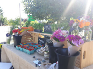Farm Stand - Flowers and Veggies