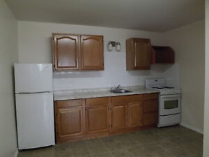 Large Two Bedroom Apartment for Rent