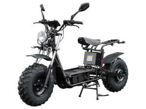 The Beast - Electric All-Terrain Scooter