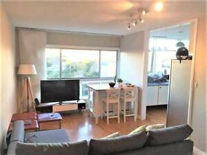Cosy Full Of Light Apartment In a Great location For Short Term Elizabeth Bay Inner Sydney Preview