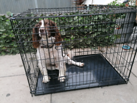Dogs crates
