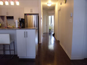 bois-francois new condo looking for man roommate