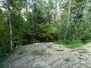 Terrain à vendre 7155, ch. de la Coopérative, Alma Lac-Saint-Jean Saguenay-Lac-Saint-Jean image 5