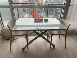 Ligne Roset Modern Glass Dinning table /Coffee table