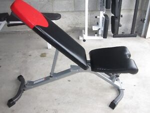 BowFleX Decline Incline FlaT BencH gym weights exercise