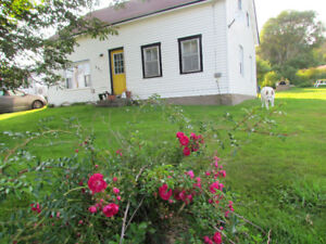 Beat the Heat with a Brier Island Getaway - Oceanfront Rental!