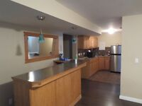 2 BR + Living Rm Walk-Up Basement.- 900 Sq.Ft in Evergreen SW