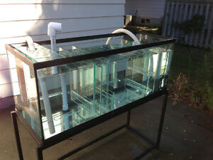 75 Gallon Custom Saltwater Sump / Refugium with Stand