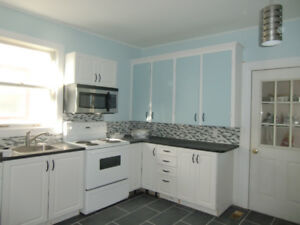 Spacious 2 bdrm in West End with parking for 2 cars for March!