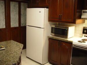 Électroménagers frigo , cuisinière  et hotte de cuisinière .