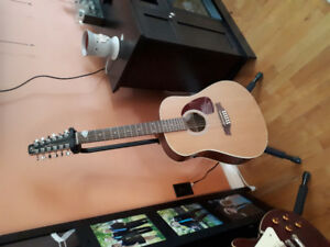 12 string with case and stand