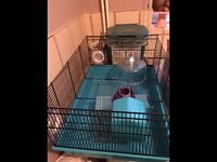 Medium hamster cage ideal for dwarf hamster