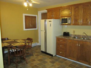 one bedroom fully furnished apartment Corner Brook available now