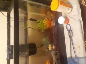 30 Gallon Fish Tank w/ Fish
