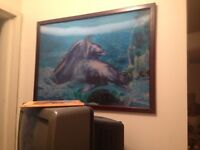 3 picture 3D dolphin photo