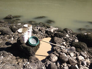 Placer gold claim on Fraser river by Yale