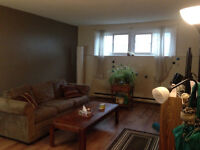 2 Bedroom Sublet Downtown Kingston