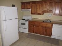 Lovely 2br.Senior friendly Apt close to holy redeemer - 4 Wendy