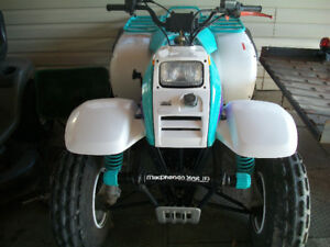 Super Clean Polaris  Trail Boss  Adult Size