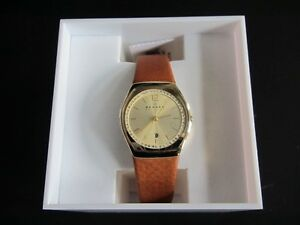 Ladies Skagen Watch:Reduced