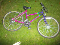 2 ADULTS 26'' MOUNTAIN BIKES £20 FOR BOTH