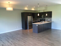 UM & Bison Brand New 3 BD Townhouse for Rent, Move-In Ready!