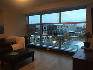 Looking for a Roommate in a BEAUTIFUL Apartment for March 1st!
