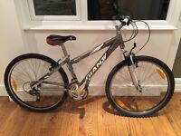 Giant Rock Mountain Bike, XS 14 inch frame