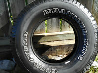 Pair of truck tires