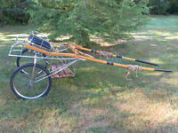 SULKY TYPE HORSE CART AND HARNESS