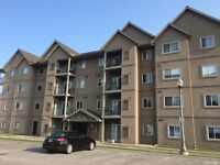 Looking to purchase or rent in Navy Yard Condos  in Amherstburg.