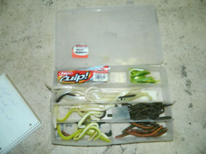 Box of Fishing worms